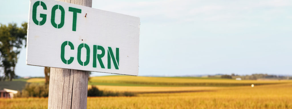 Good nutrient management practices produce better crops and protects the groundwater.