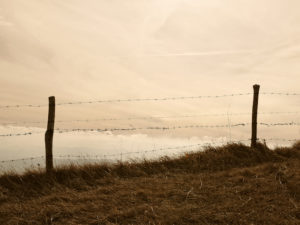 What obstacles and cultural features are encountered, like fences?
